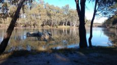 flood murrumbidgee