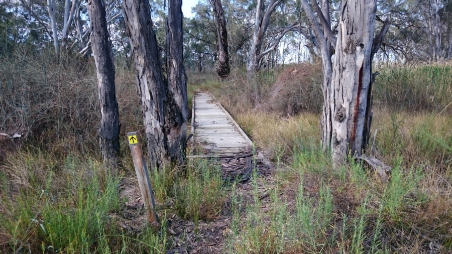 Chowilla Game Reserve