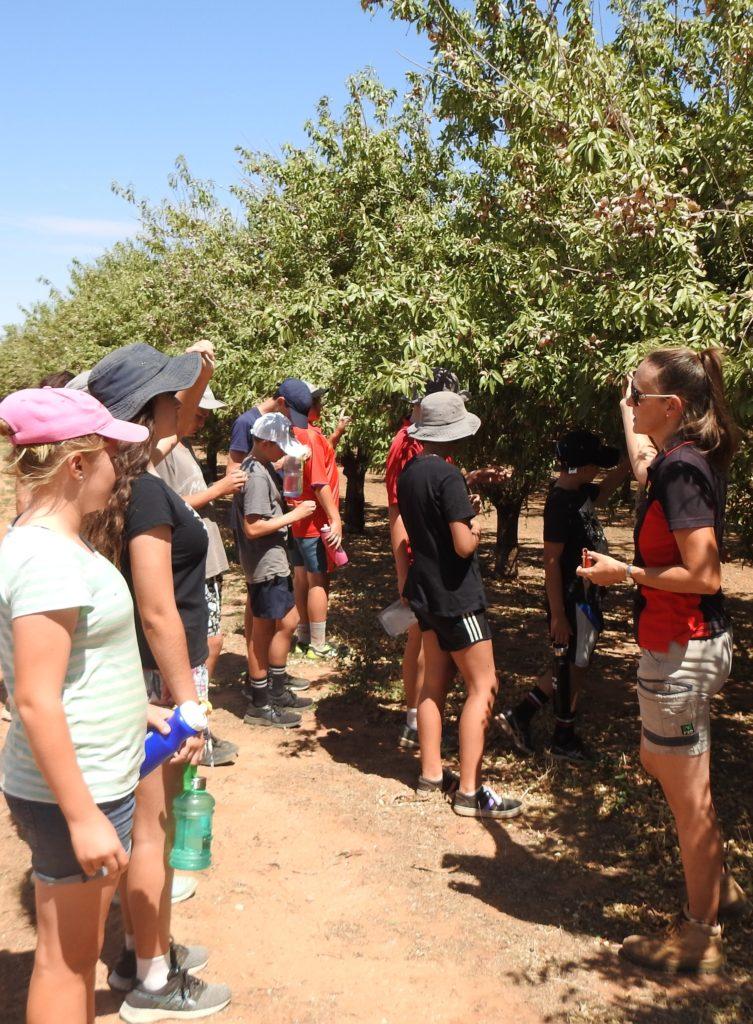Orchard Tour
