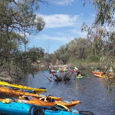 Landed Kayaks